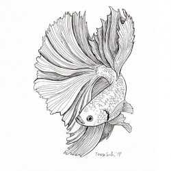 """Betta fish"", original A5"
