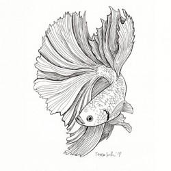 """Betta fish"", original A5"