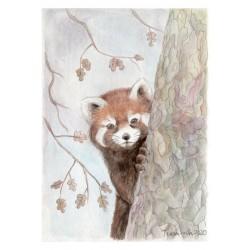 """Panda rojo"", original A5"