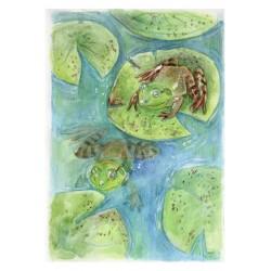 Ilustración original ranas, A5